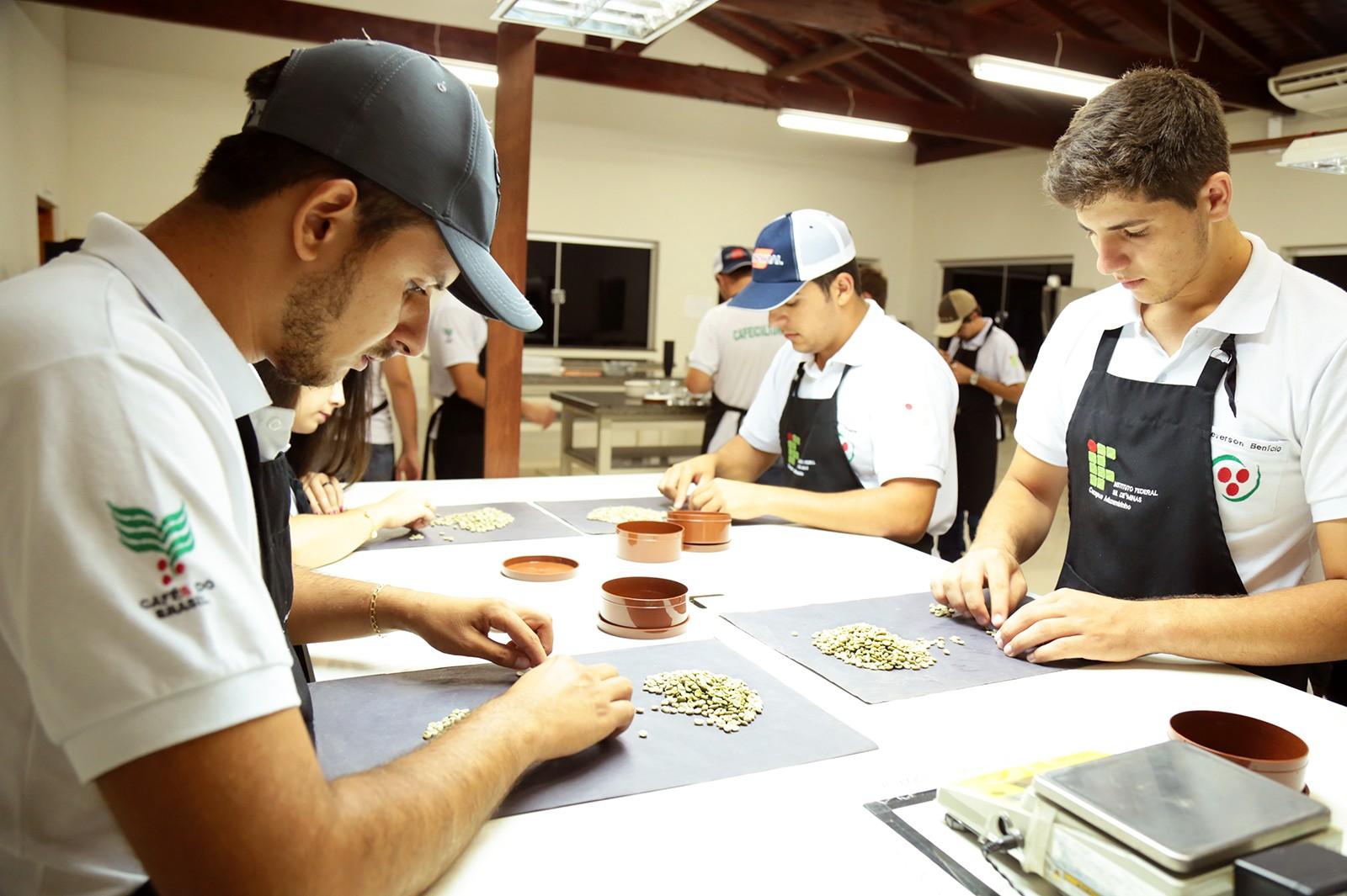 Alunos estudam toda a cadeia produtiva do café até a comercialização (Foto: Viola Júnior)