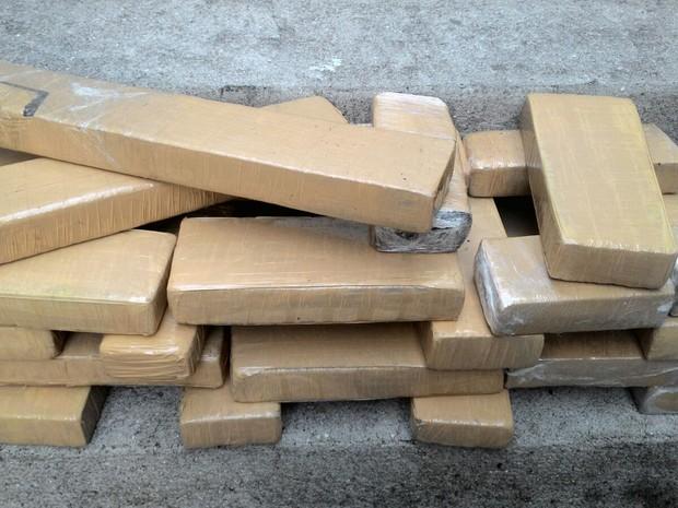 Vinte e dois kgs de maconha foram apreendidos durante a operação (Foto: Polícia Militar)