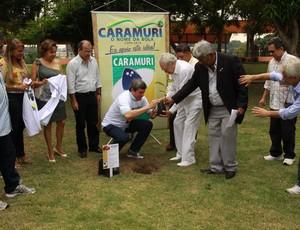 Muda de Caramuri foi plantada na Vila Olímpica de Manaus com a presença de Thiago de Melo (Foto: Reprodução/Aquarius Publicidade)