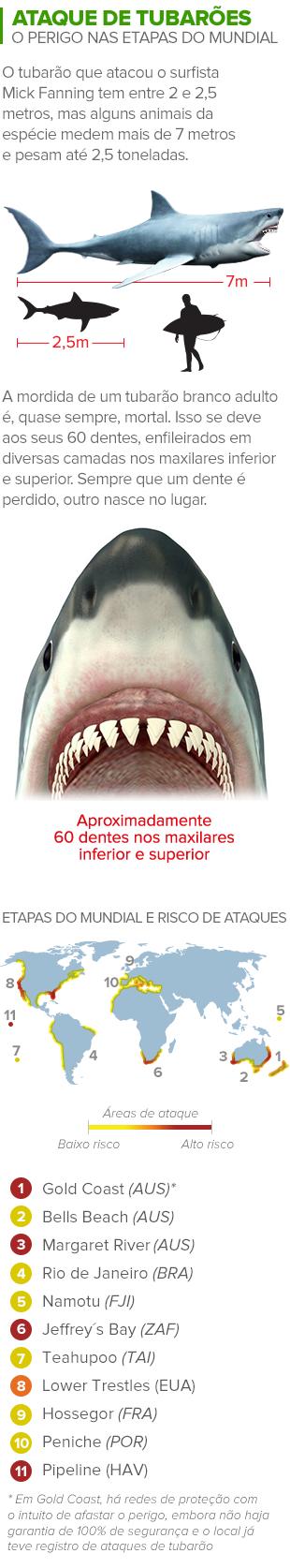 info ataque tubarão 3 (Foto: arte esporte)