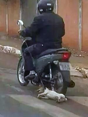 cão cachorro arrastado Frutal homem motociclista Polícia Civil (Foto: Polícia Civil/ Divulgação)