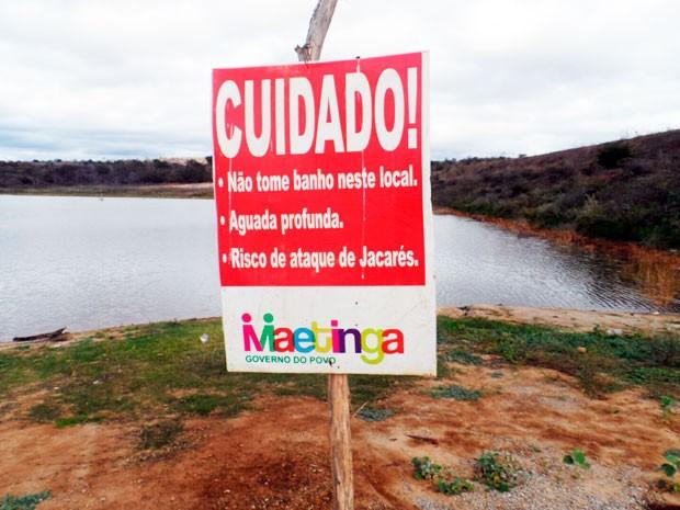 Jacaré amizade Bahia 02 (Foto: Altier Souza/www.destaquebahia.com.br)
