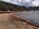 Mancha aparece no mar da Praia da Tartaruga, em Búzios, no RJ