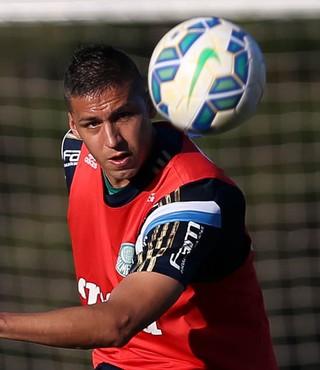 Tobio Palmeiras (Foto: Cesar Greco/Ag Palmeiras/Divulgação)