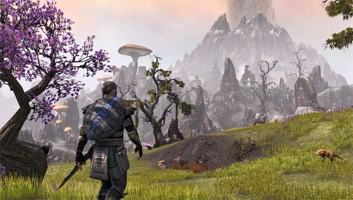 The Elder Scrolls Online (Foto: Divulgação)
