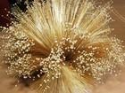 Peças de capim dourado valem mais que 'ouro' na região do Jalapão