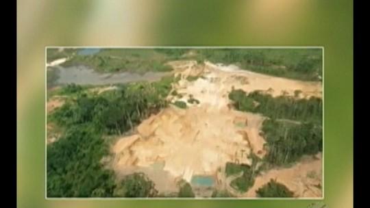 Operação embarga área desmatada de 900 hectares em São Félix do Xingu