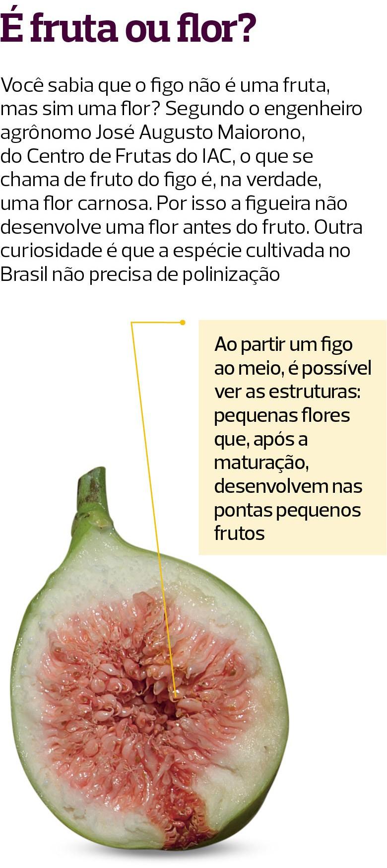 Figo (Foto:  )