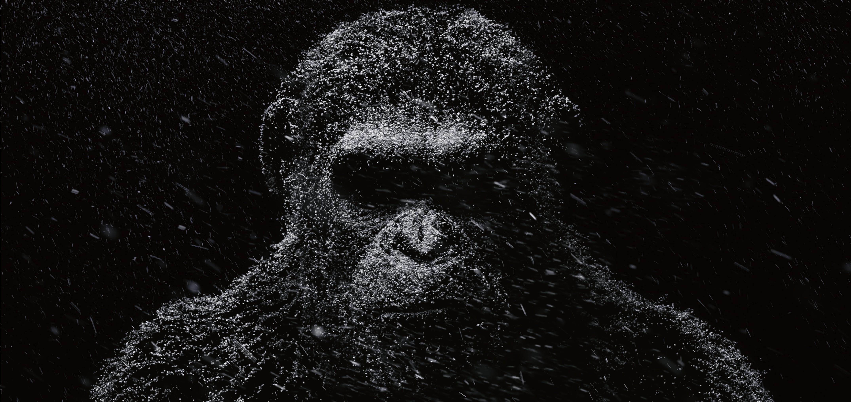 Planeta dos Macacos: A Guerra (Foto: Divulgação)