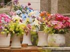 Prefeitura limita colocação de vasos no cemitério de Poços de Caldas, MG