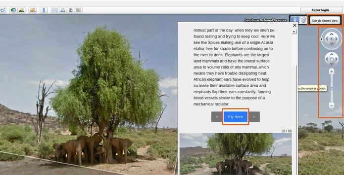 Acesse imagens disponíveis dos animais selvagens no Street View (Foto: Reprodução/Barbara Mannara)
