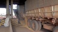 Indefinição no valor do frete paralisa comércio de grãos em MT