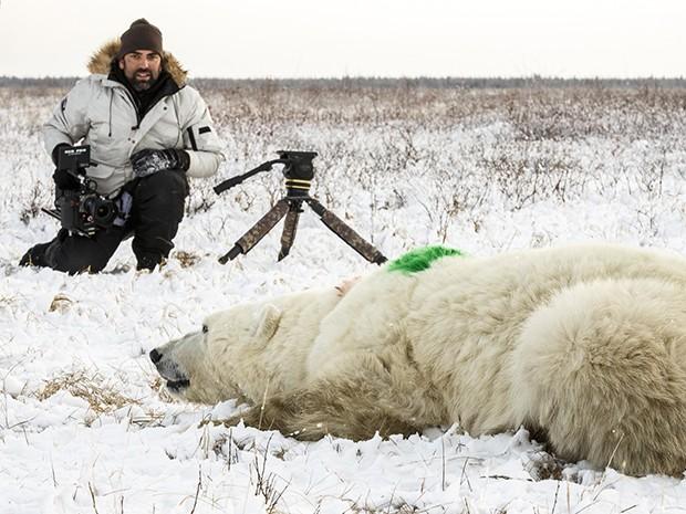 Cristian Dimitrius ficou cara a cara com os ursos polares (Foto: Gshow)