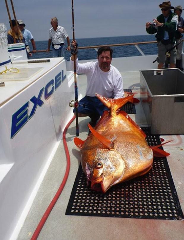 Peixe fisgado por Ludlow supera o antigo recorde em mais de 8,5 quilos (Foto: Reprodução/Facebook/Joe Ludlow)