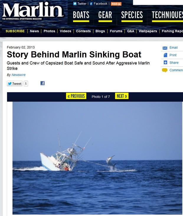 Fotógrafo registrou momentos em que pescadores lutavam contra marlim antes do barco virar (Foto: Reprodução)