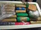 Polícia apreende 43 quilos de drogas em caixa de isopor dentro de ônibus