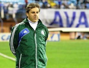 Gilson Kleina Avaí x Palmeiras (Foto: Jamira Furlani/Avaí FC)