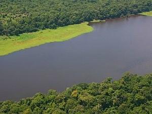 Reserva de Desenvolvimento Sustentável Amanã (Foto: Divulgação/Instituto Mamiraúa)