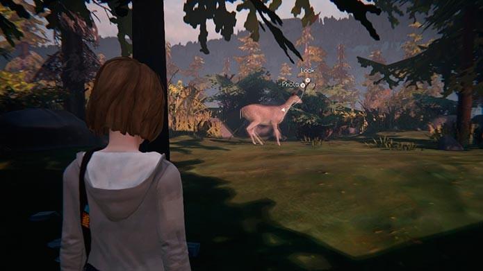 A sétima foto é a do cervo, que também aparece no primeiro episódio (Foto: Reprodução/Tais Carvalho)