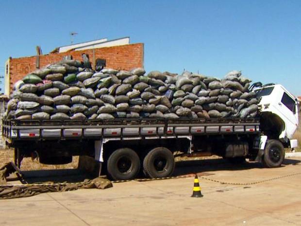 Drogas estava escondidas em sacas de carvão (Foto: Reprodução EPTV)