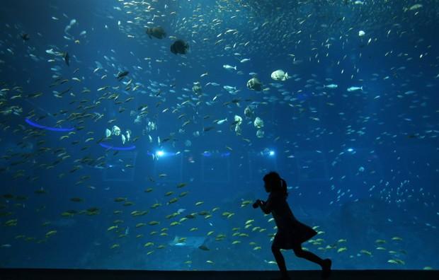 Menina passa próxima da Galeria Oceano (Foto: Edgar Su/Reuters)