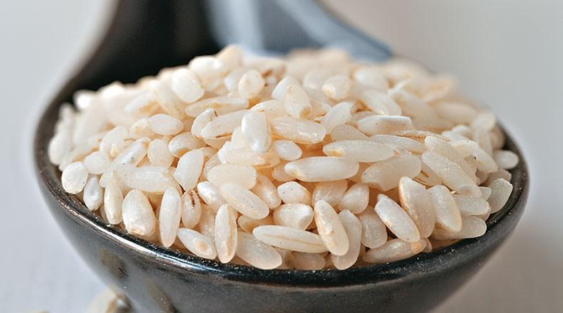 arroz_graos_agricultura (Foto: Kay Rentscler)