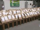 Cerca de 45 mil pães são distribuídos em homenagem ao Dia do Pão