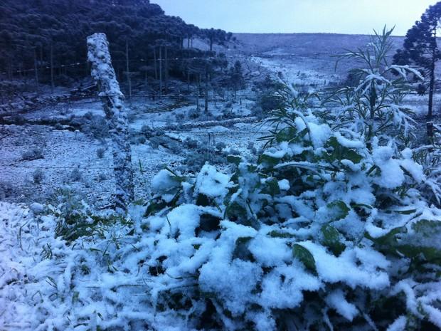 Neve muda a paisagem em São José dos Ausentes, RS (Foto: Caetanno Freitas/G1)