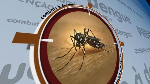 Campanha sobre a Dengue já está sendo veiculada na telinha da TV Tribuna (Foto: Reprodução / TV Tribuna)