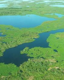 Você conhece o Pantanal?