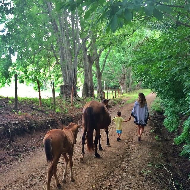 Mais cedo, Gisele postou uma foto do passeio com o filho e os animais (Foto: Reprodução)