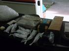 Mulher é presa em Rio Claro,SP, com maconha e cocaína dentro de casa