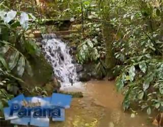 Meu Paraná (Foto: Reprodução)