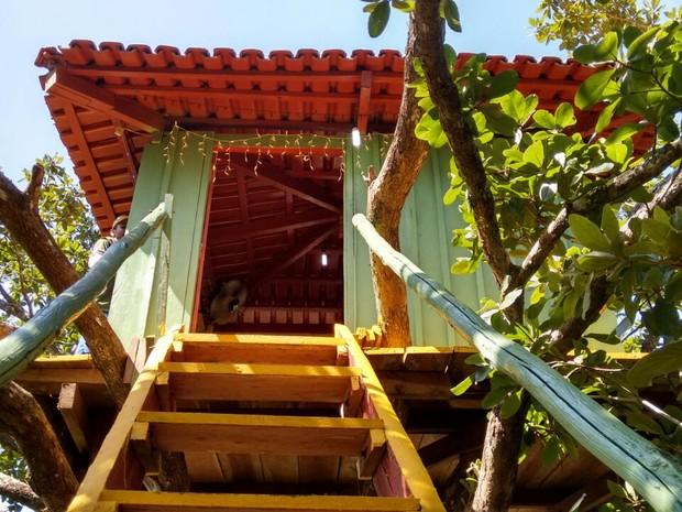 Casa na árvore atrai turistas de várias cidades do Tocantins e fora do estado (Foto: Leontino Labre Filho/Arquivo Pessoal)