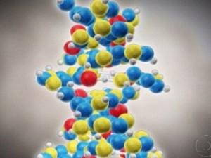 DNA pode ser usado como uma espécie de  pen drive, diz pesquisa publicada em revista (Foto: Rede Globo)