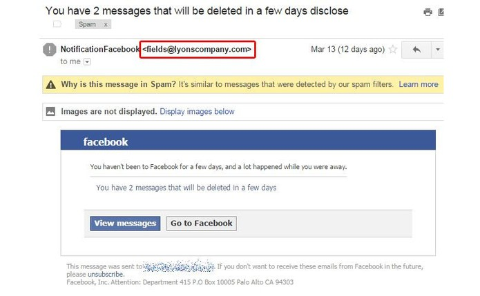 E-mails falsos do Facebook podem ocultar golpe phishing para roubar dados (Foto: Divulgação/Kaspersky Lab)