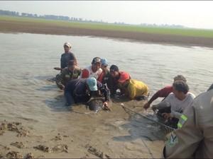 Peixe-boi foi levado para outro lago na mesma comunidade (Foto: Sidcley Matos)