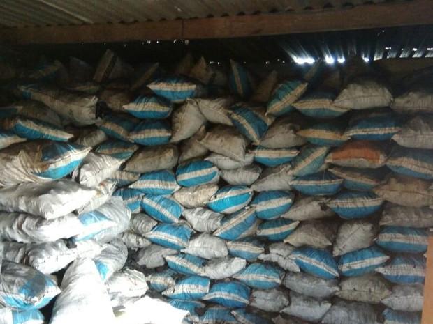 Aprensão de 13 toneladas foi no bairro Agrisa (Foto: Polícia Ambiental/Divulgação)