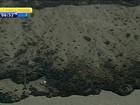 Funcionários da Transpetro removem areia suja de óleo em praia do RS