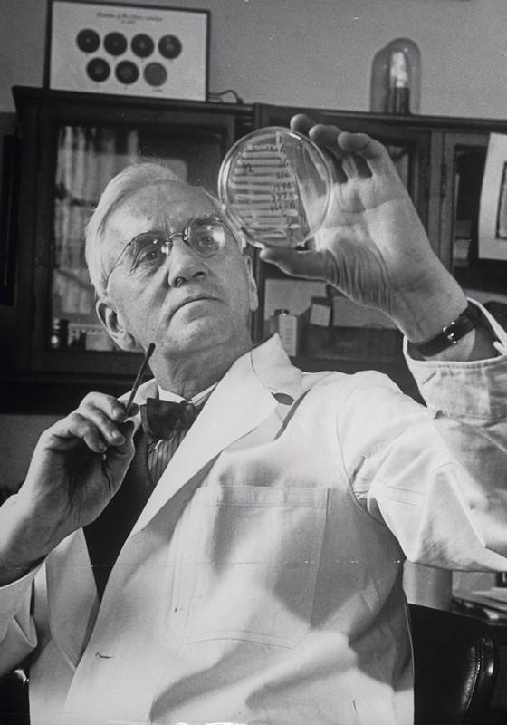 O médico Alexander Fleming. (Foto: Gettty Image)