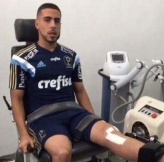 Gabriel Palmeiras (Foto: Reprodução)