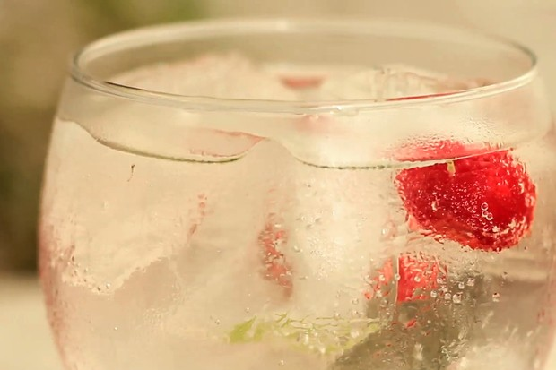 Gin Tônica (Foto: Thais Del Gaudio)