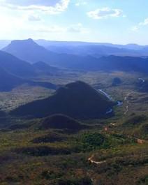Você conhece os tesouros do Cerrado?