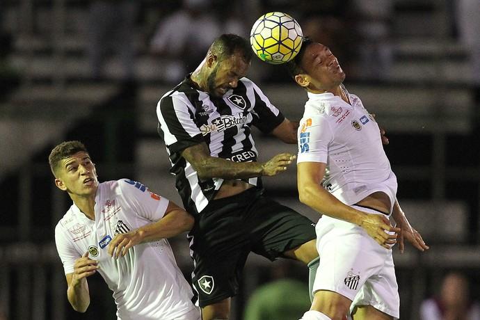 Bruno Silva Botafogo (Foto: Vitor Silva / SSpress / Botafogo)