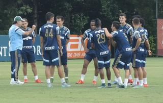 Marcelo Oliveira grupo Palmeiras (Foto: Felipe Zito)