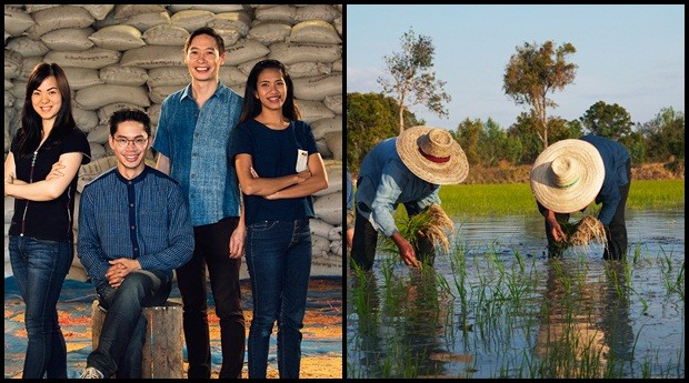 Siam Organic: empresa ajuda agricultores de arroz (Foto: Reprodução)
