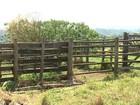 Polícia investiga furto de dezenas de novilhas em fazenda de Cabreúva