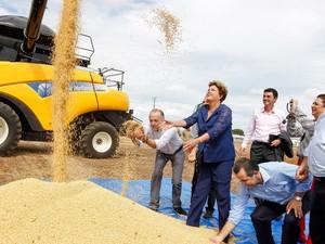 Presidente Dilma Rousseff joga para cima grãos de soja colhidos em Lucas do Rio Verde (MT) (Foto: Roberto Stuckert Filho/PR)