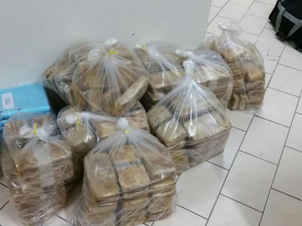Motorista foi preso em MT com 208 kg de cocaína em assoalho de caminhão (Foto: Assessoria/Polícia Federal em MT)