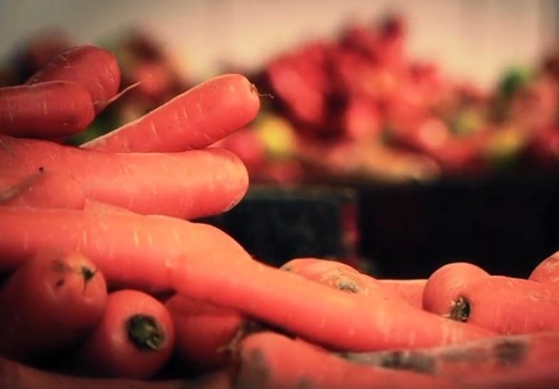 Cerca de 1/3 dos alimentos produzidos no mundo são desperdiçados (Foto: Reprodução/RBS TV)